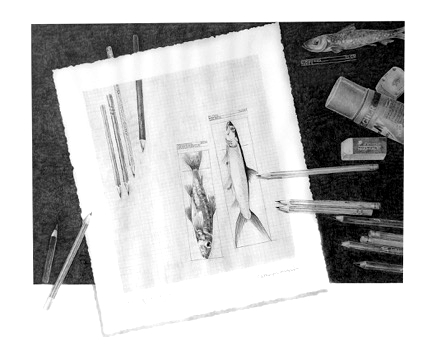 Kathryn's Educative Art, fishes and pencils
