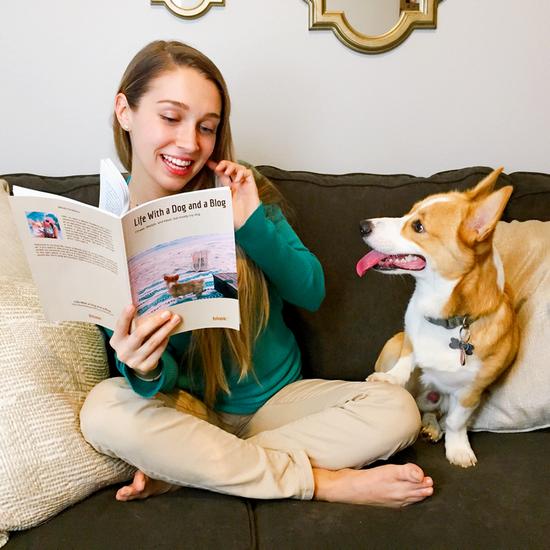 life-dog-blog-blook-melody-sofa