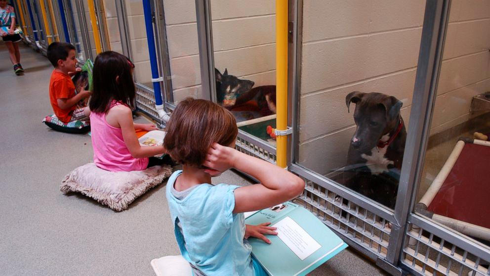 Children sitting in front of dog kennels reading to them
