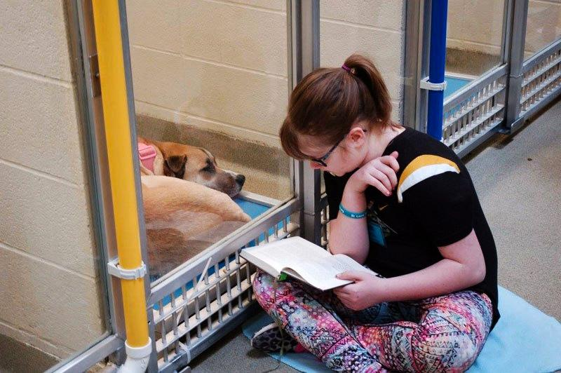 Girl sitting on the floor reading to a dog