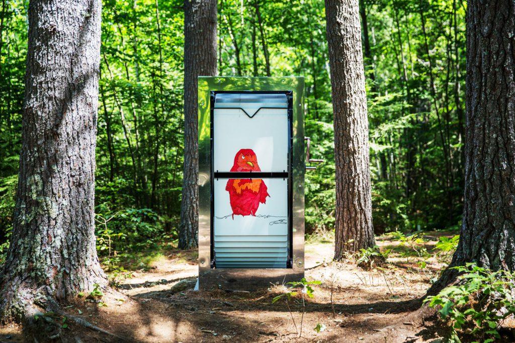 Flipbooks dans le bois du New Hampshire