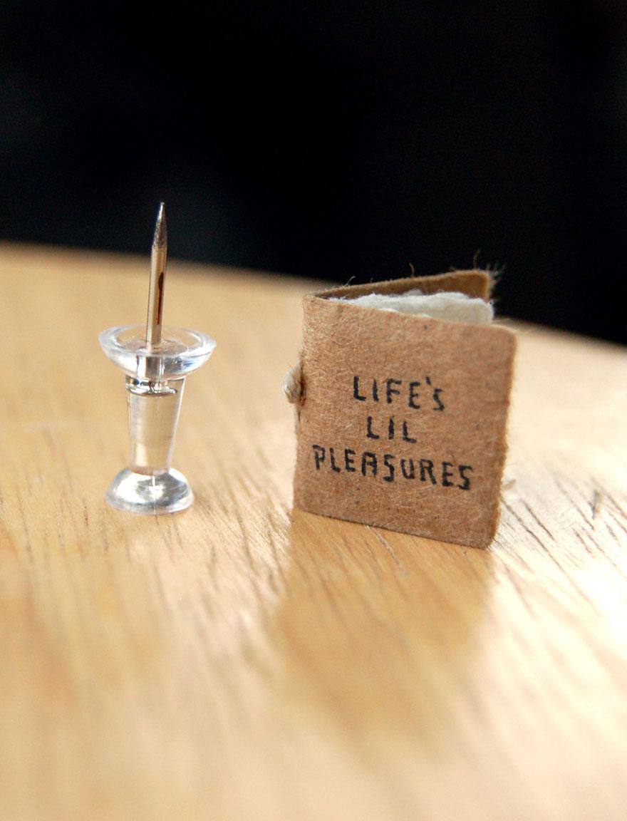 livre-miniature-plaisir-lil