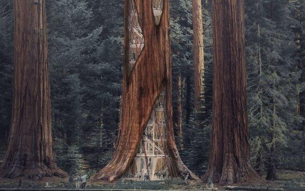 architecture d'un gratte-ciel de sequoia
