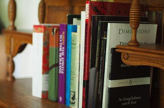 livre alignés sur un shelfie