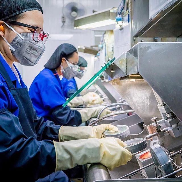 travail dans l'usine d'essilor